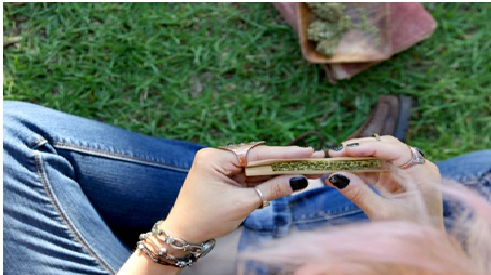 How to Roll a Perfect Cannabis Joint