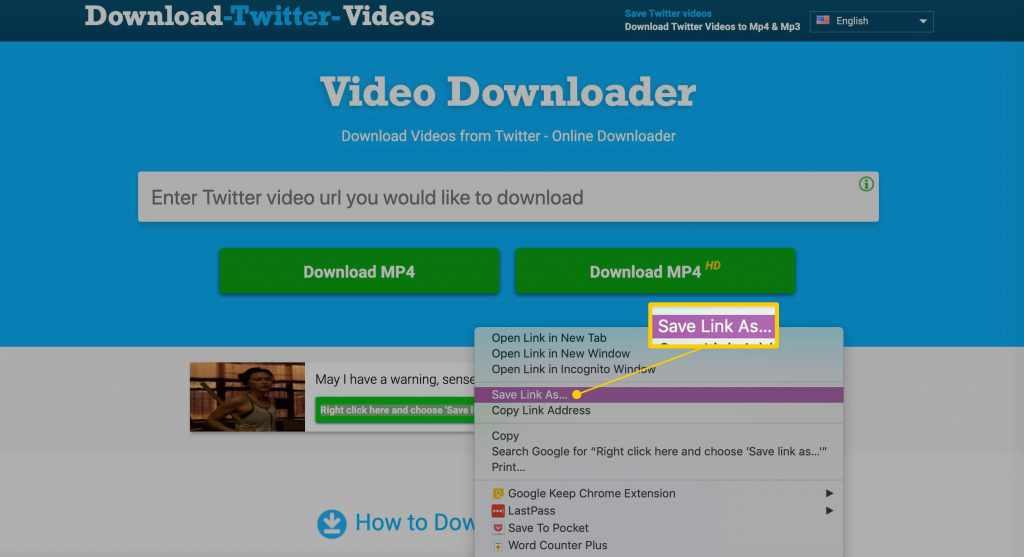 twitter video download online